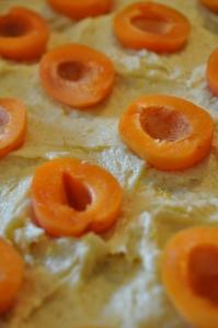 aprikožu pīrāgs